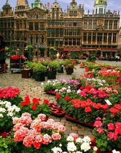 Viajar para Bruxelas central .jpg